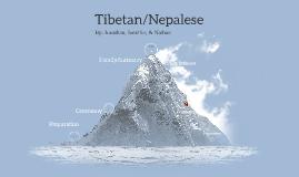 Tibetan Marriages