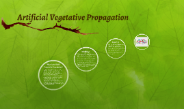 Copy of Artificial Vegetative Propagation