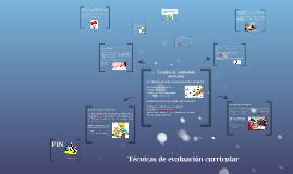 Copy of Técnicas de evaluación curricular