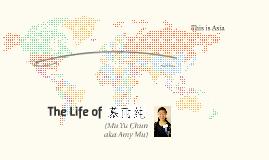 Amy Mu's Life Story