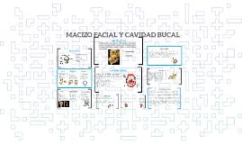 MACIZO FACIAL Y CAVIDAD BUCAL