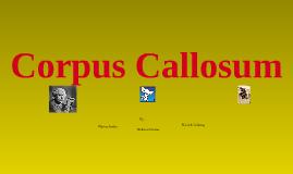 Copy of Corpus Callosum