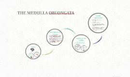 The Medulla Oblongata - GOA Psychology