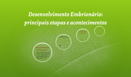 Desenvolvimento Embrionário: