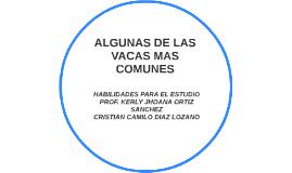 ALGUNAS DE LAS VACAS MAS COMUNES