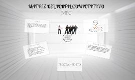 Copy of Matriz de Perfil Competitivo