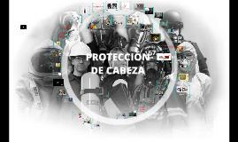 PROTECCION DE CABEZA