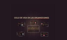 CICLO DE VIDA EN LAS ORGANIZCIONES