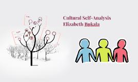 Cultural Self-Analysis