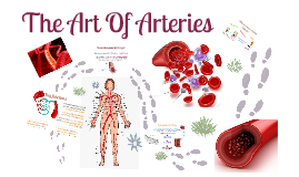 The Art Of Arteries