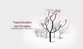 visual sensation and visual perception