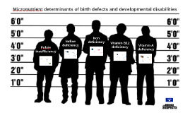Micronutrient determinants of birth defects and developmental disabilities