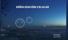 señalizacion celular