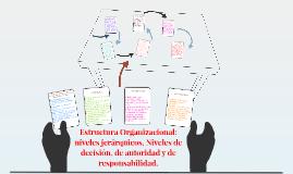 Copy of 1. Estructura Organizacional: niveles jerárquicos, Niveles d