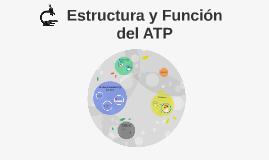 Estructura y Función del ATP