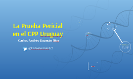 Prueba pericial Uruguay