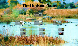 The Hudson Plains