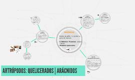 ARTRÓPODOS: QUELICERADOS | ARÁCNIDOS