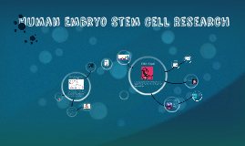 Human Embryo Stem Cell Research