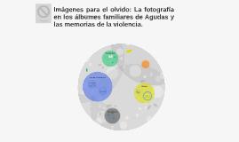 Imágenes para el olvido: La fotografía en los álbumes famili