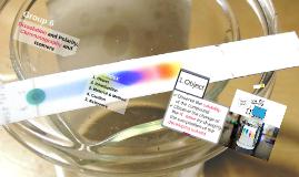 생유기화학실험 6조