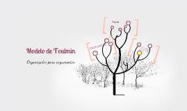 Copy of Modelo de Toulmin