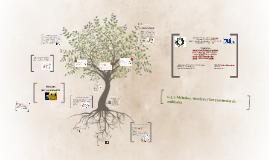 Copy of 6.2.2-Métodos,técnicas y herramientas de auditoría