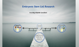Embryonic Stem Cells - Bioethics Consultant