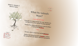 What do animals want?