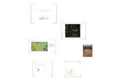 Copy of presentacion ciencia del suelo