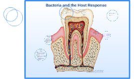 Bacteria and the Host Response