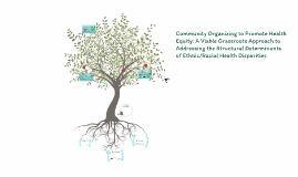 Final Copy of Community Organizing