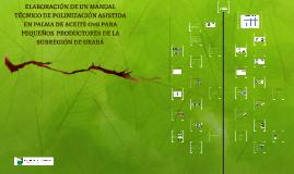 Copy of Manual técnico de polinización asistida en palma de aceite OxG para pequeños productores