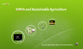 GMOs and Sustainable Agricultre