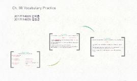 Ch. 3 Vocabulary Practice