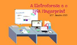 Eletroforese e DNA Fingerprint