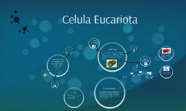 Copy of Celula Eucariota