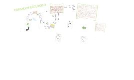 Presentacion de ECOLOGY EICH VI S.A.S