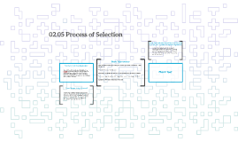 02.05 Process of Selection