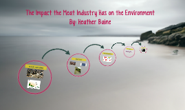 The Impact the Meat Industry has on the Environment