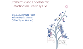 Copy of Exothermic and Endothermic Reactions In Everyday Life