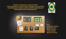 Proyecto integrado de semestre (PIS)