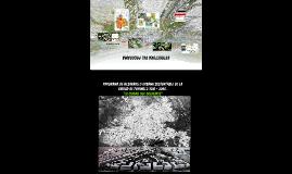Copia de PROGRAMA DE DESARROLLO URBANO SUSTENTABLE