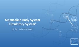 Mammalian Body System