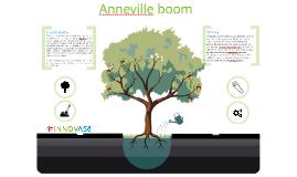 Anneville boom