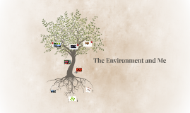 The Environment and Me