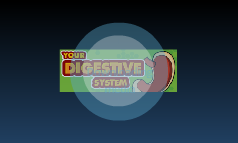 NEW Digestive System=D