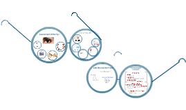 N1 - Visual Alterations