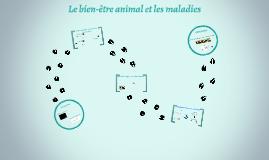 Zootechnie, le bien-être animal