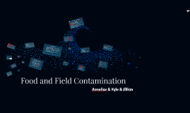 Food and Field Contamination